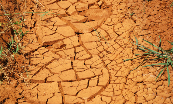 Dry Ground by Max Wolfe on Flickr